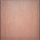 1/4 4 x 8 Revolution Ply Underlayment Plywood