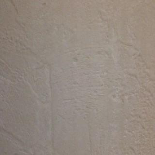 7/16 4 x 8 Hardboard Stuccato Siding