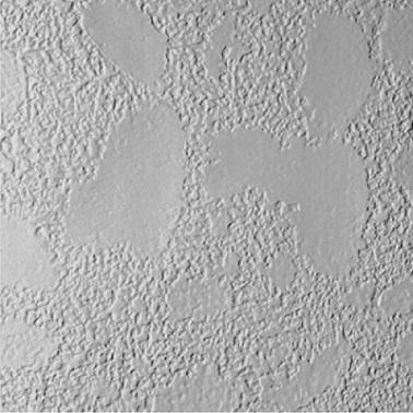 5/16 4 x 8 Cementitious stuccato Siding