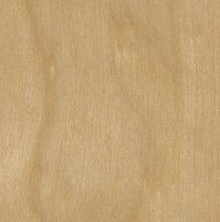 1/2 4 X 8 G2S Import Birch Plywood